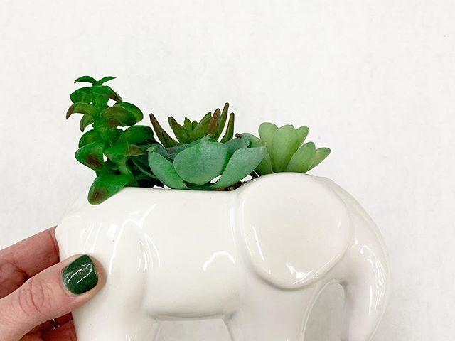 Elephant Planter with Faux Succulents