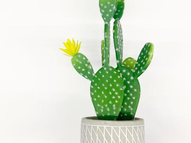 Mainstays Decorative Cactus Decor