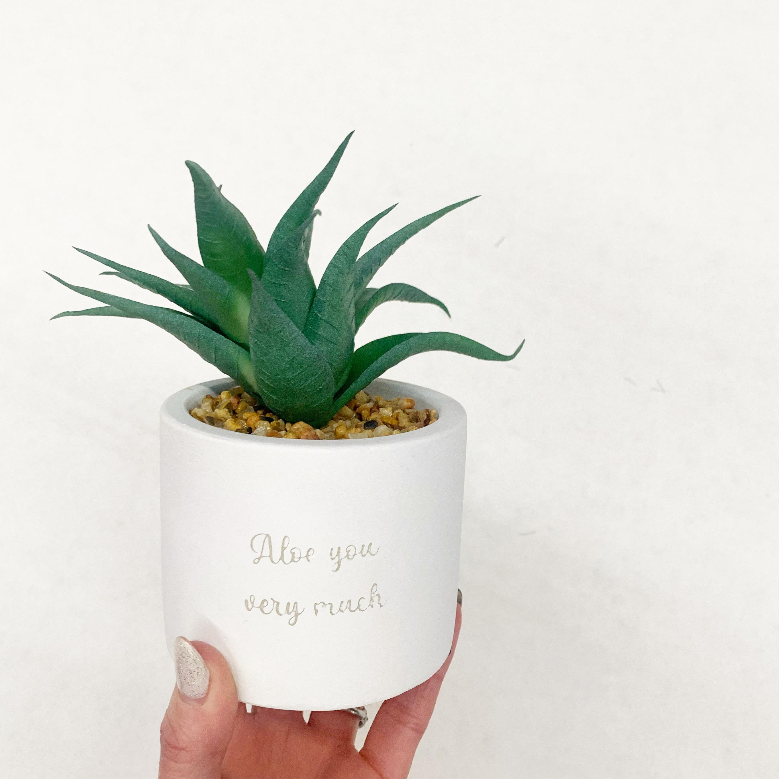 faux succulent pots